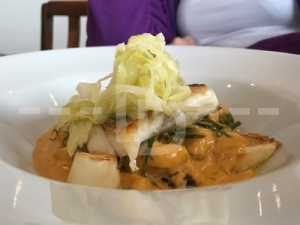 Roast Hake for main course at The Royal George, Appledore